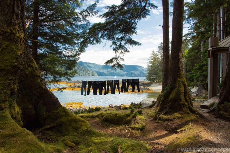 Haida Gwaii-5688